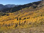 Click image for larger version.  Name:wasatch_fall.jpg Views:164 Size:111.1 KB ID:17837