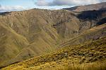 Click image for larger version.  Name:alpine-tussock-singletrack-queenstown-mountains.jpg Views:55 Size:75.9 KB ID:18366